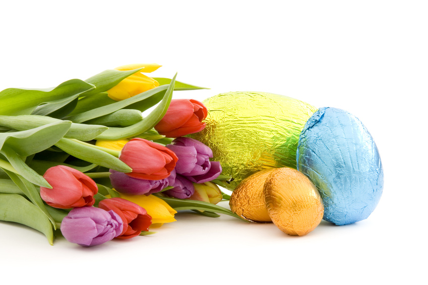 Chocolate easter eggs and fresh spring tulips